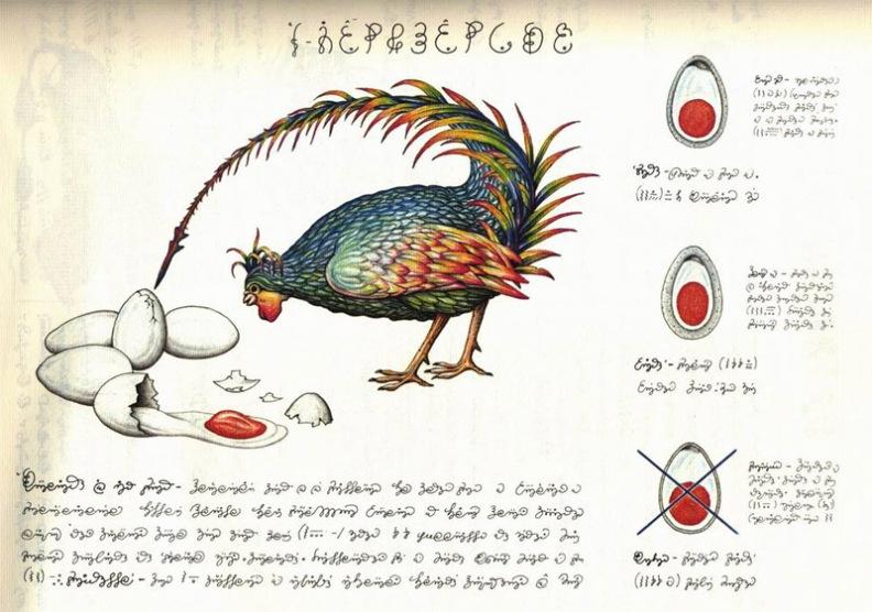 codex_seraphinianus7